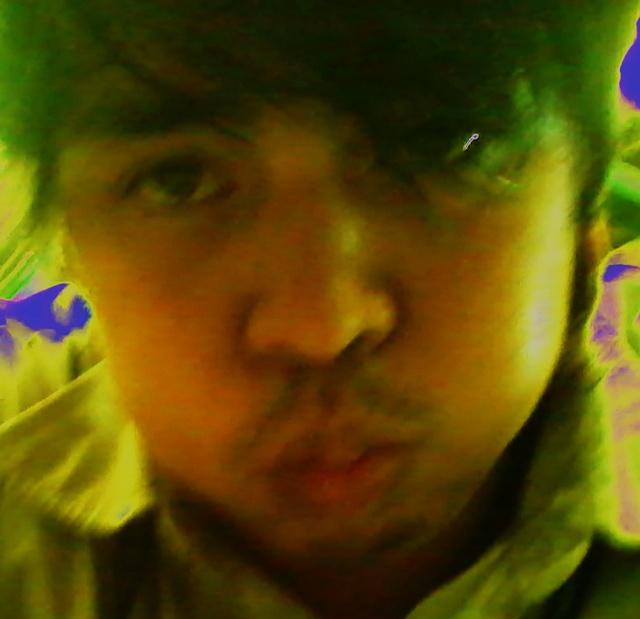 I love my Chow :)